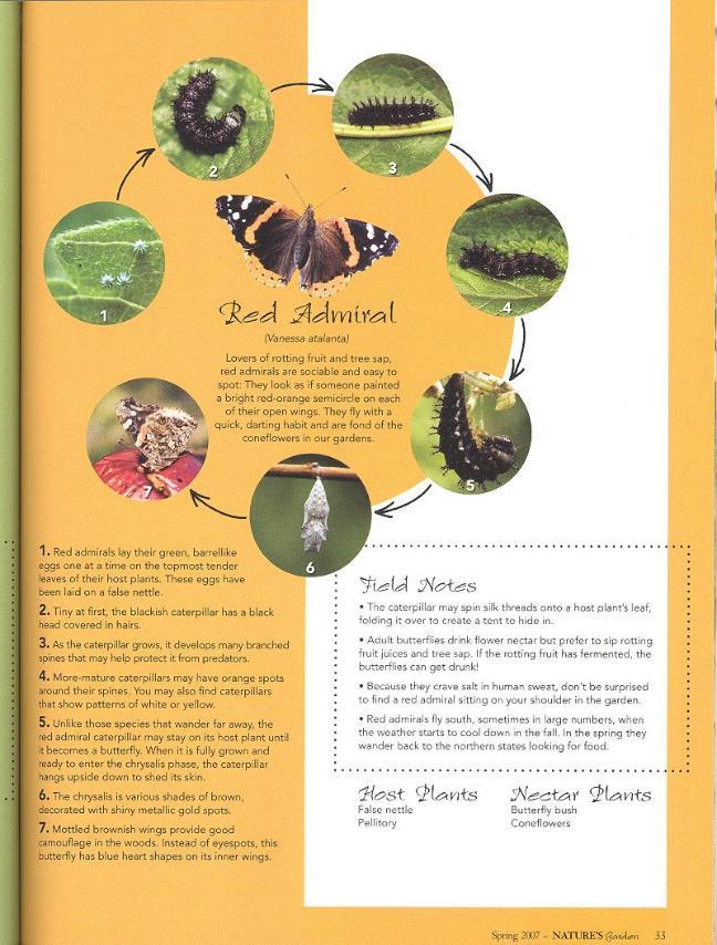 Natures Home Magazine